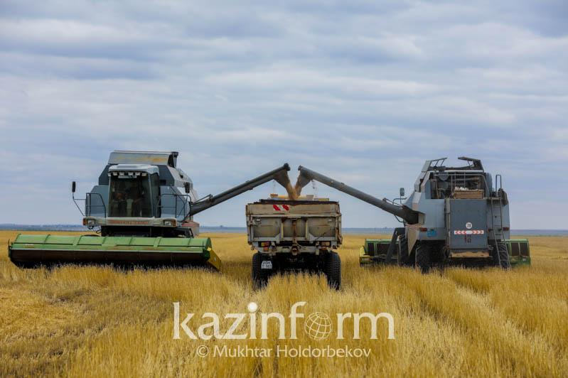 Касым-Жомарт Токаев: Главное - своевременно собрать зерновые