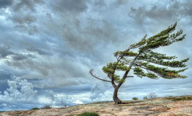 О надвигающемся штормовом ветре предупредили атыраусцев
