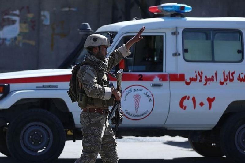 Suicide truck bombing kills 20 in Afghanistan
