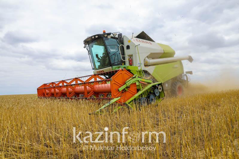 Сбор урожая проходит в Восточном Казахстане