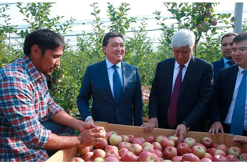 Аскар Мамин ознакомился с ходом реализации инвестпроектов в Алматинской области
