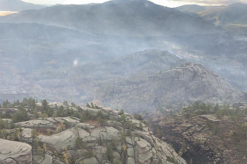 Ерлан Тұрғымбаев Баянауыл ұлттық паркіндегі өрттің мән-жайын айтты