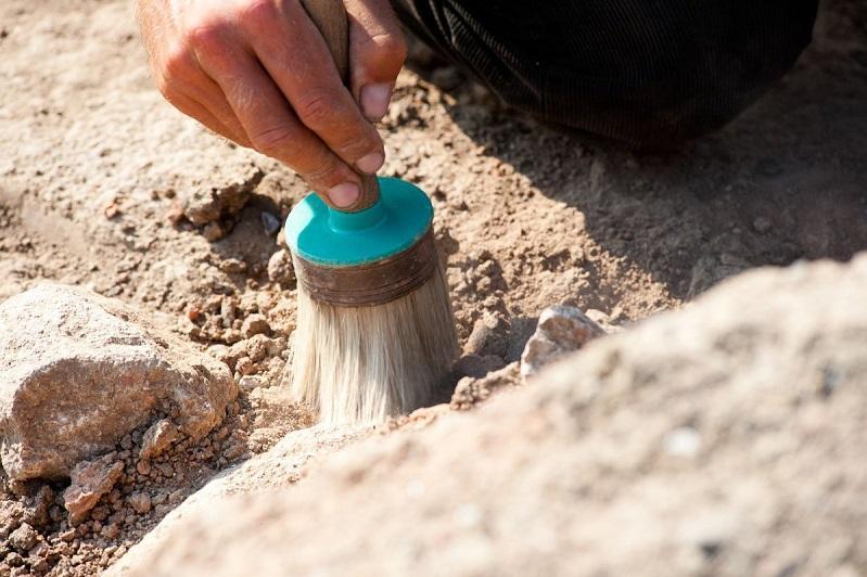 有1.13亿年历史的鱼龙化石在阿克套展出