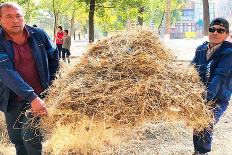 «Бірге-таза Қазақстан»: 12 тонн мусора собрали жамбылские работники госкорпорации