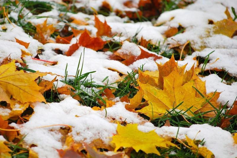 天气:北哈州将迎来雨夹雪