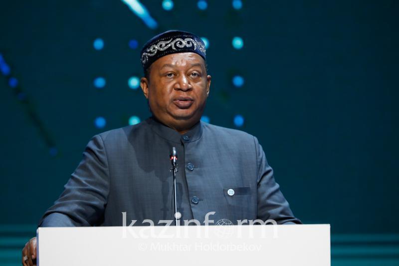 OPEC Sec-Gen: Oil & gas will dominate until 2040