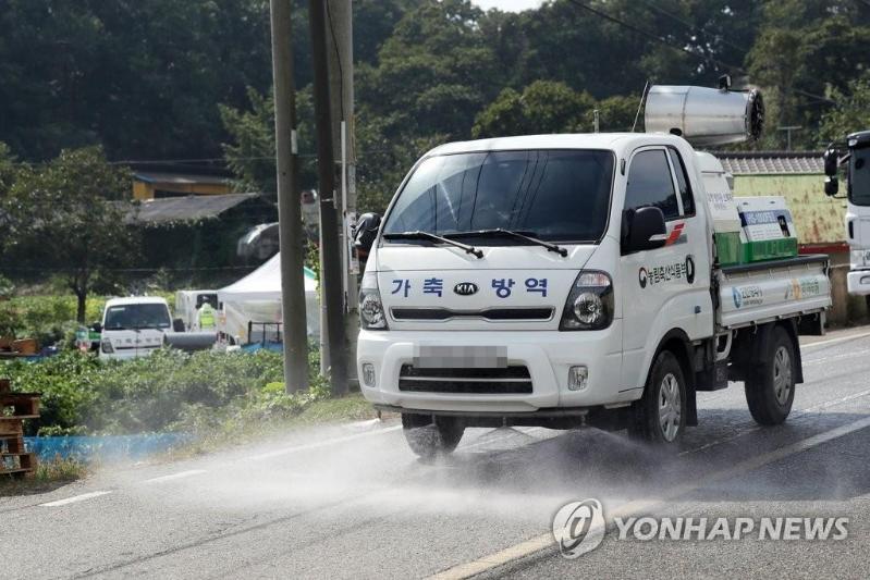 韩国出现第九起非洲猪瘟疫情