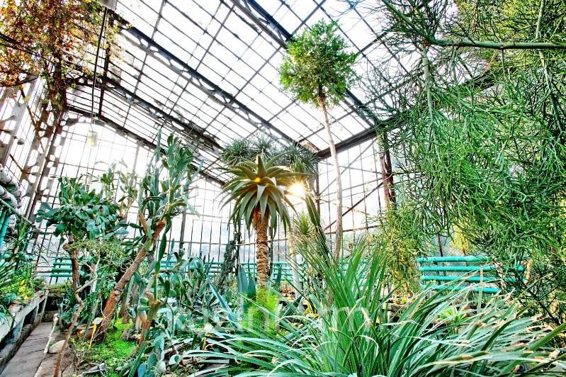 Ботанический сад Алматы откроют для посещений весной 2020 года