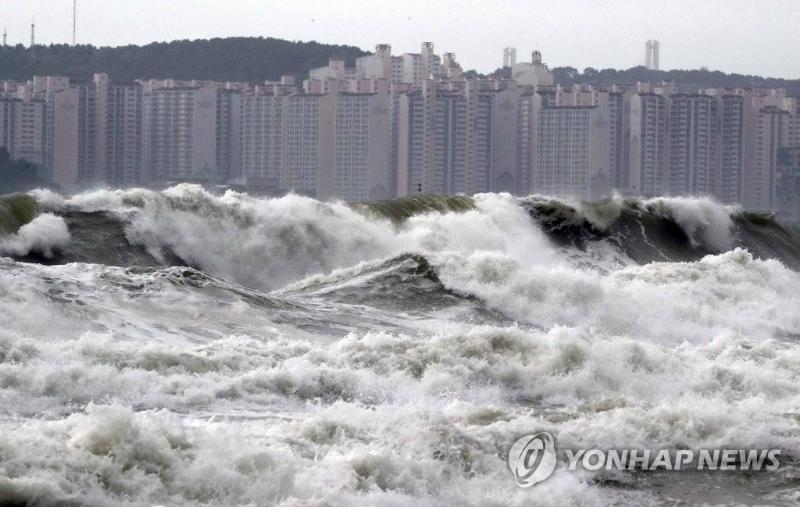 """台风""""米娜""""逼近韩国"""