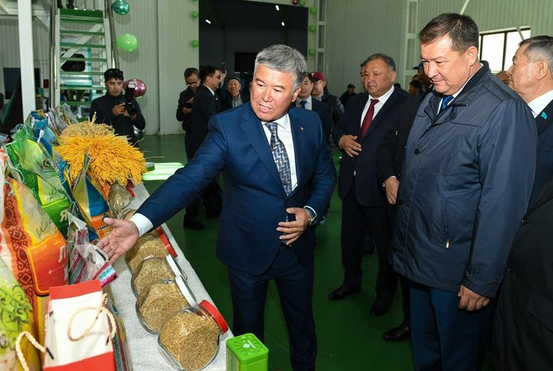 В Кызылорде открыли завод по переработке риса