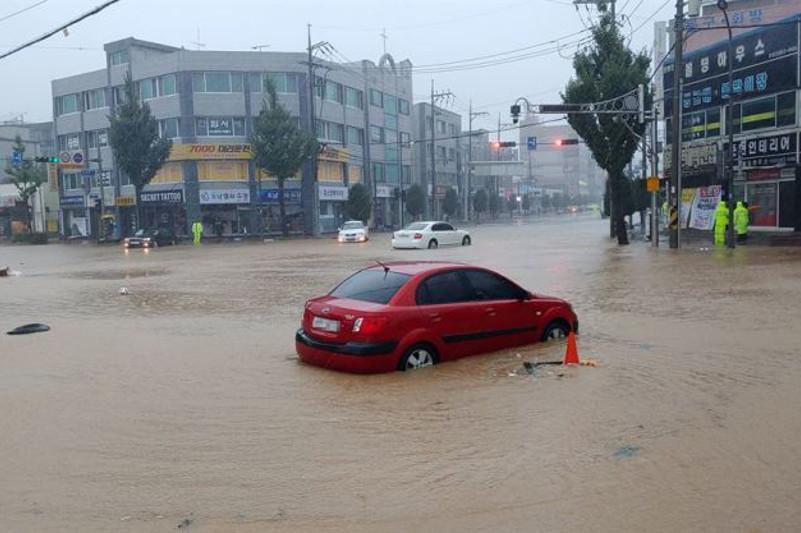 """台风""""米娜""""袭击韩国致4人死亡2人失踪"""