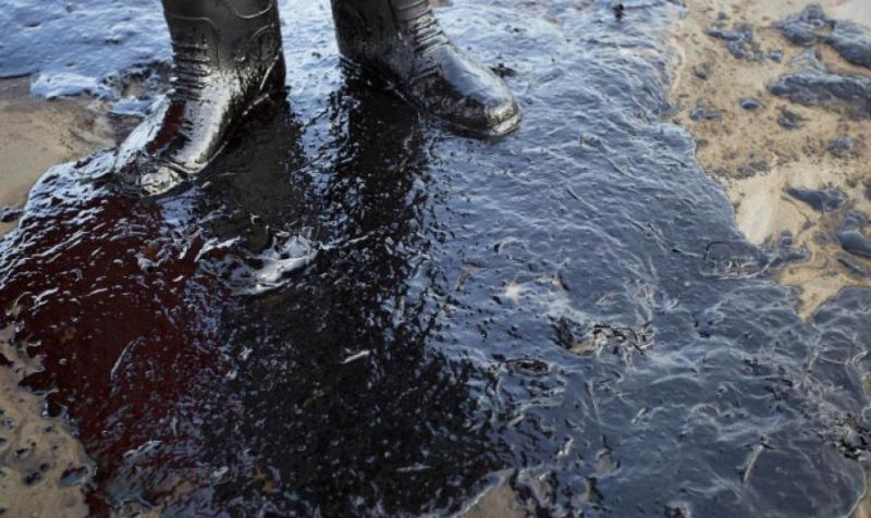 巴西东北部大片海滩遭原油污染