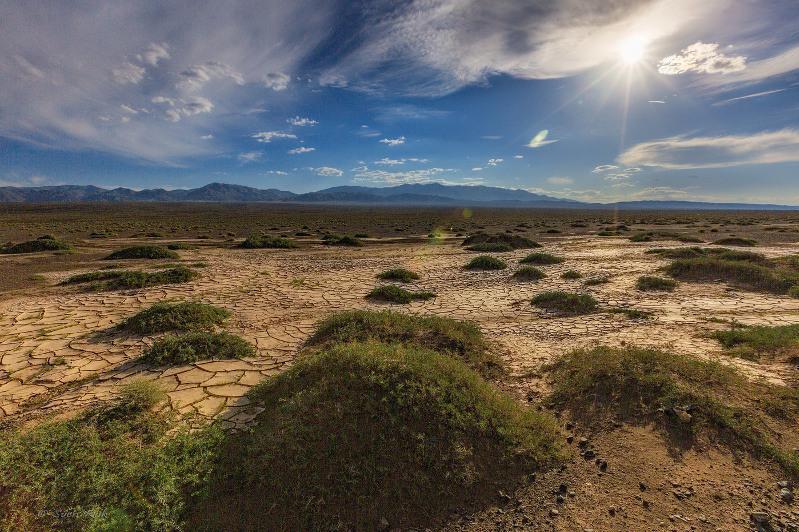 О деградации и опустынивании земель в Казахстане рассказали в Министерстве экологии