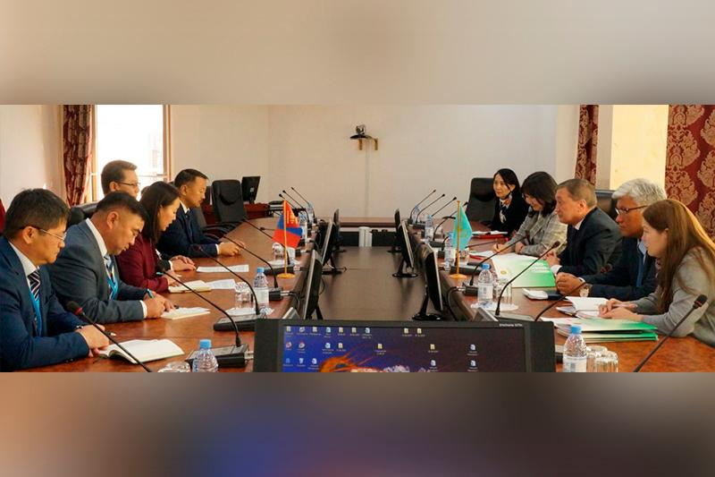 Mongolian, Kazakh businesses interested in creating sheep clusters