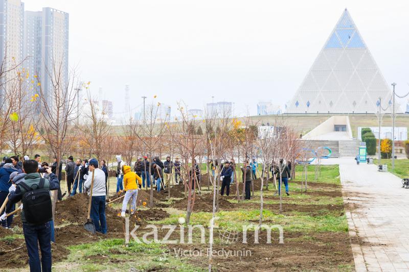 Казахстанские и иностранные дипломаты приняли участие в акции по посадке деревьев