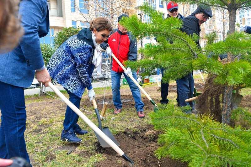 参议院议长参加首都植树日活动