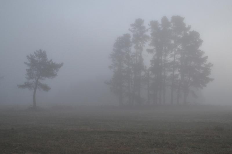 Туман ожидается в Мангистауской области