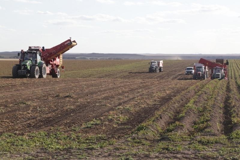 Уборку урожая завершили в Карагандинской области