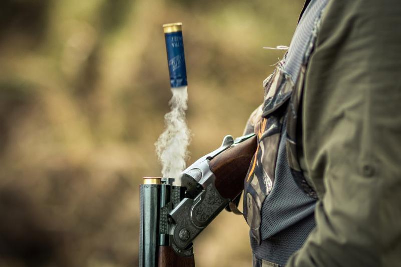 Сибирскую косулю отстрелил браконьер в СКО