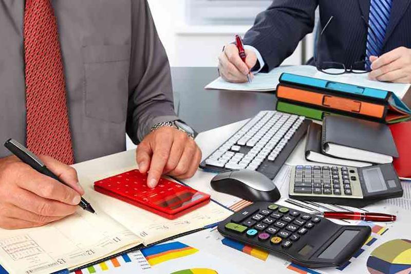 税收赦免:哈萨克斯坦自然人纳税人共补缴税款近80亿坚戈