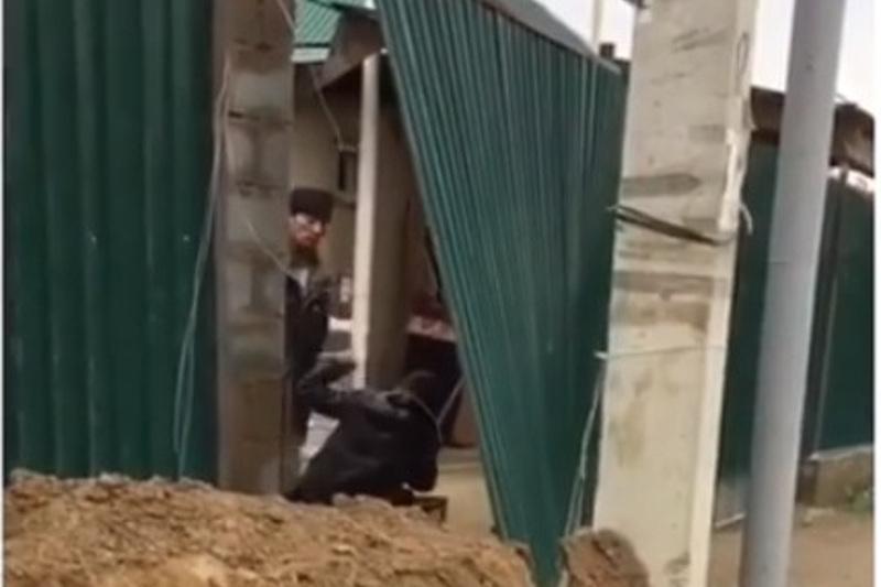 Побившего сына мухобойкой мужчину наказали в Алматы