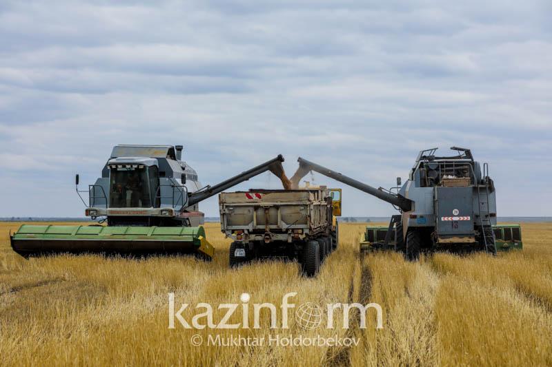 北哈州粮食收割工作即将结束