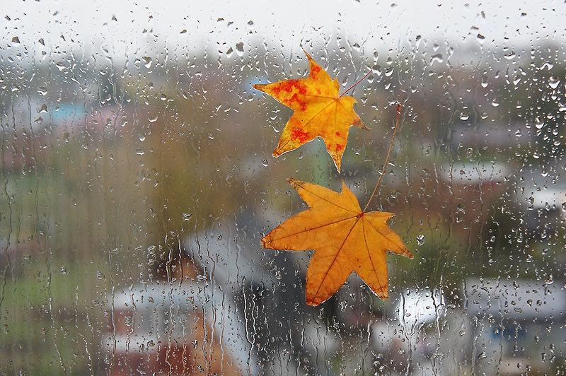 Rain, black ice forecast for Kazakhstan