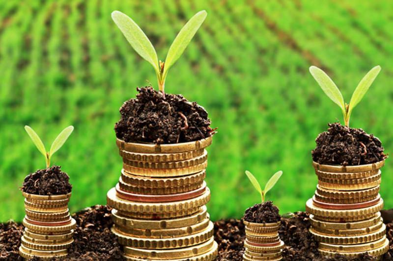 Проект нового экокодекса предусматривает принцип «загрязнитель платит» - АхметжанПримкулов