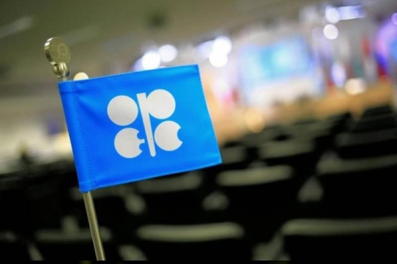OPEC daily basket price rises to $59.54 a barrel Thursday
