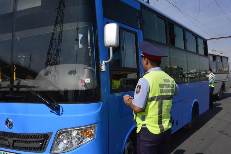 Половину правонарушений на жамбылских дорогах совершают водители  автобусов