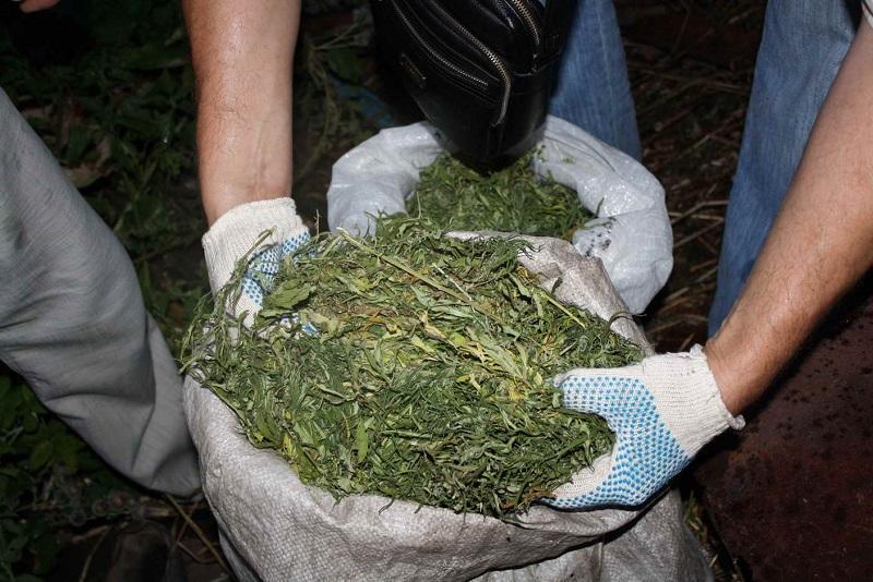 Жамбылда жыл басынан бері 2,5 тонна есірткі тәркіленген