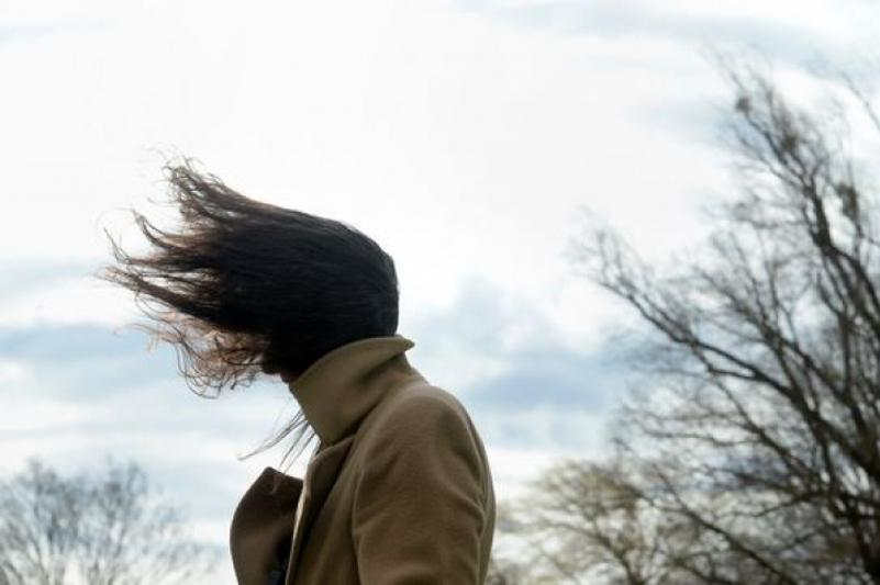 Strong winds and low temperatures forecast in three regions of Kazakhstan