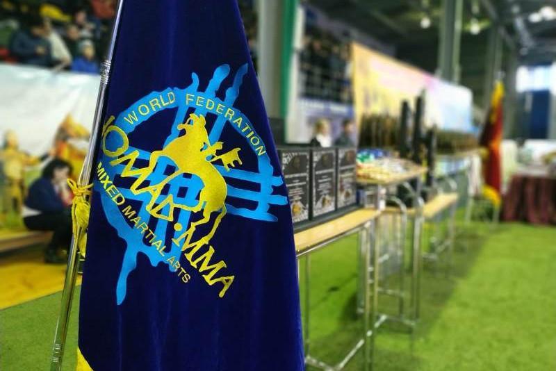 Открытый Чемпионат Азии по NOMAD MMA прошел в Караганде
