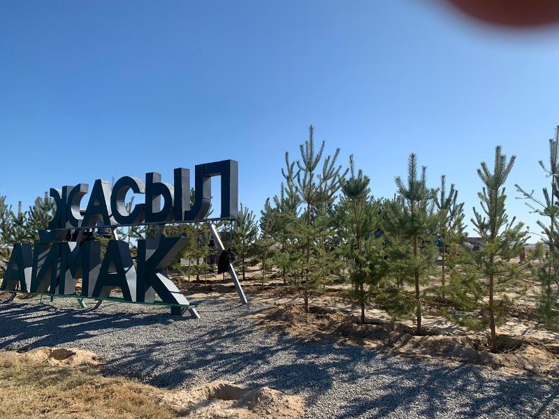 Өмірзақ Шөкеев: Түркістан облысында 3,5 млн ағаш егу жоспарланып отыр