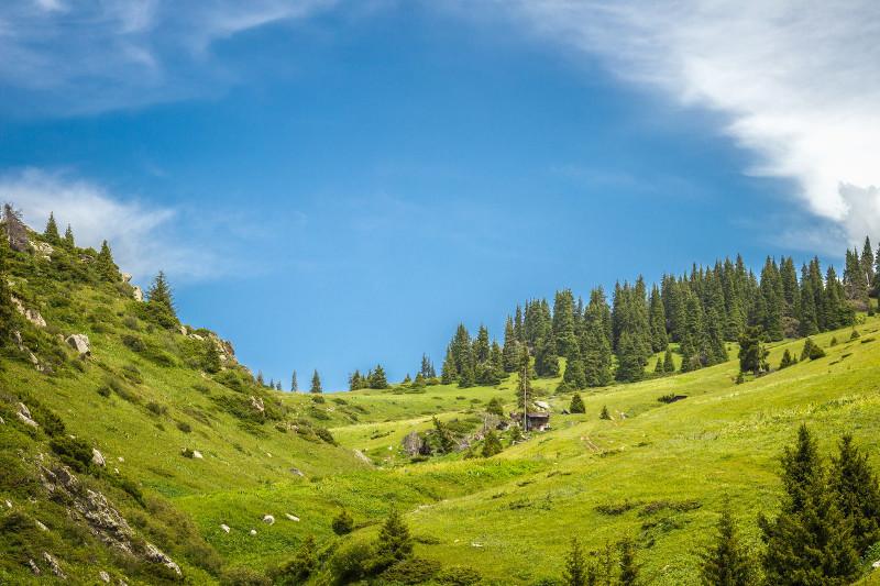 «Көкжайлау» курортына бөлінген жер ұлттық парк құрамына қайтарылуы мүмкін