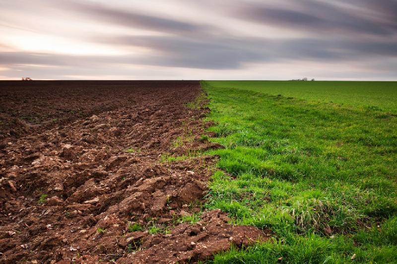 Қостанай облысында 1 млн гектар жер мақсатсыз пайдаланылған