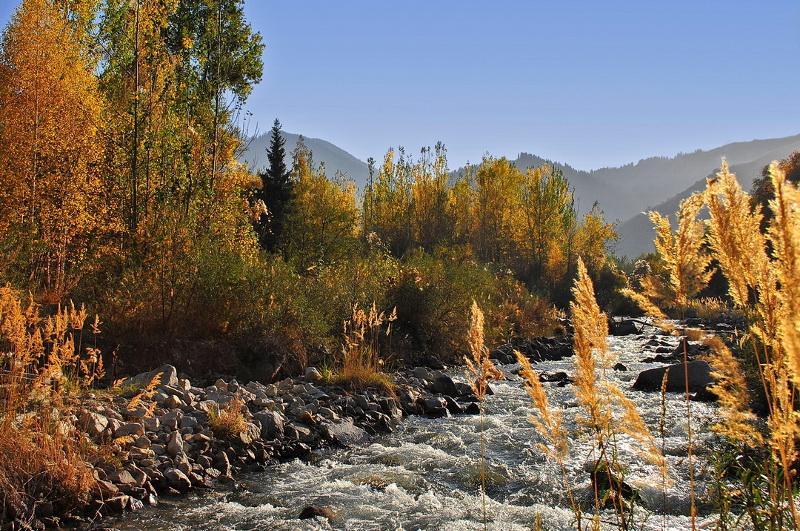 Необходимо начать строительство плотин в ущельях Аксай и Аюсай - Касым-Жомарт Токаев