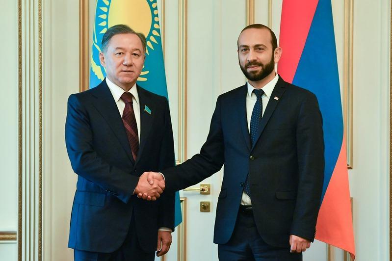 尼格马图林会见亚美尼亚国民议会议长米尔佐扬