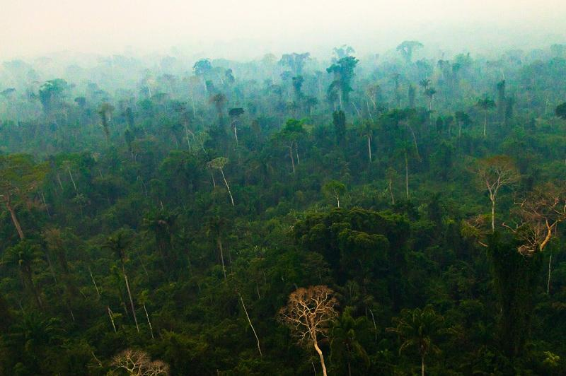 ناسا سپۋتنيگى امازونيا ۇستىندە اۋانىڭ بىردەن قۇرعاپ كەتكەنىن تىركەدى