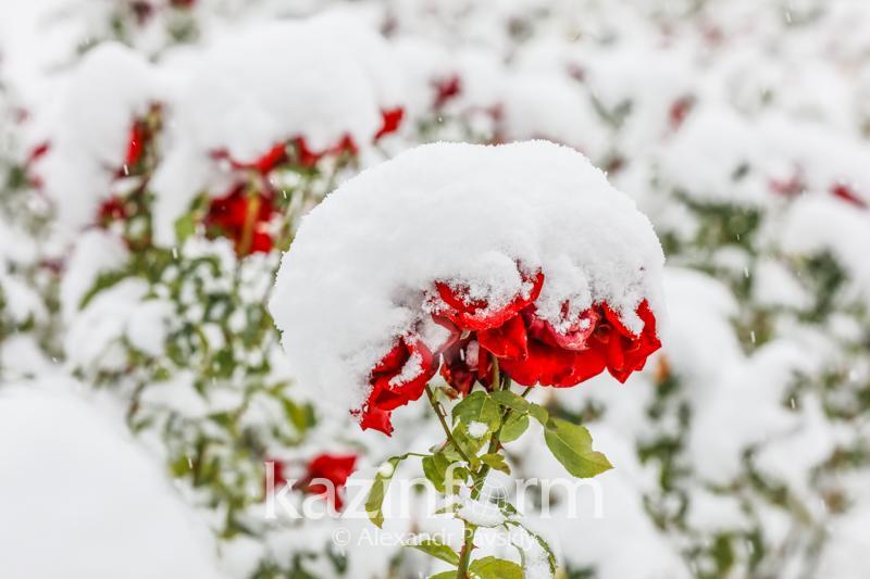 Дождь и снег – прогноз погоды в Казахстане на 9 ноября