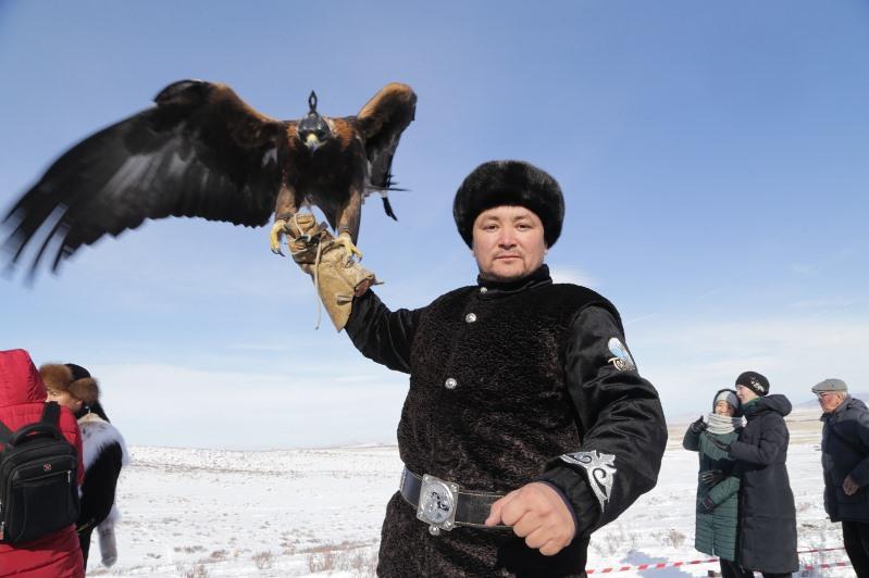 Турнир по охоте с хищными птицами проходит в Карагандинской области