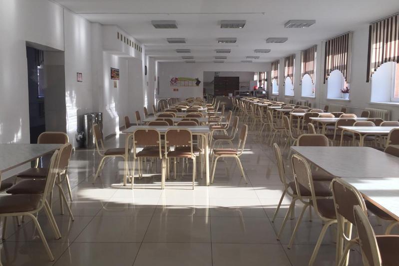 В Акмолинской области пояснили ситуацию с отравлением детей