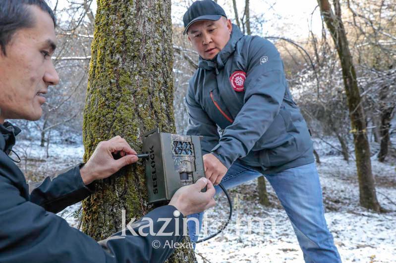 Как в Казахстане будут бороться с браконьерами