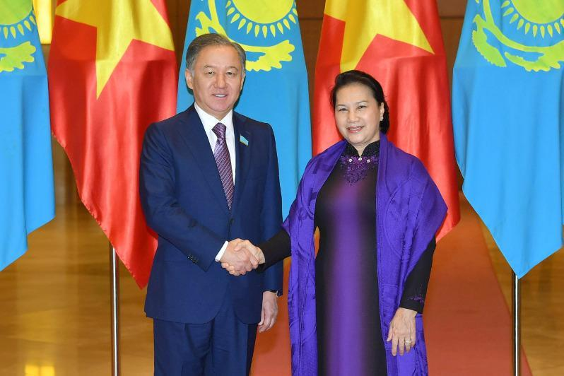 尼格马图林会见越南国会主席阮氏金银