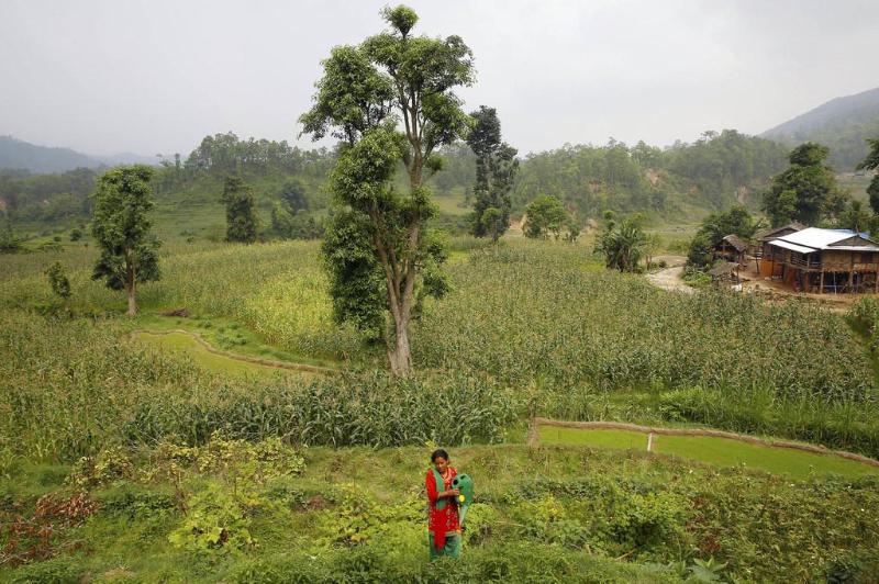 绿色气候基金批准1.61亿美元支持智利、吉尔吉斯斯坦和尼泊尔应对气候变化