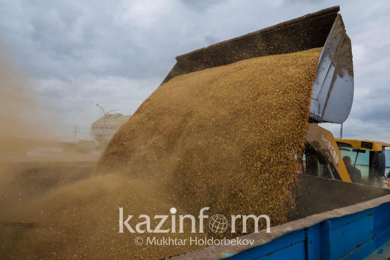 前三季度小麦出口量同比下降11%