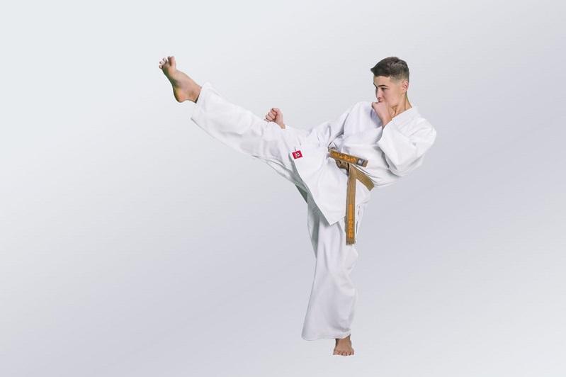 Қазақстанда киокушинкай каратэден  Әлем чемпионаты өтеді