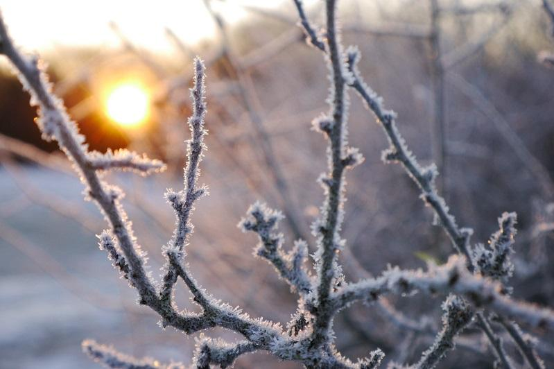 Foggy weather expected in Kazakhstan Nov 16