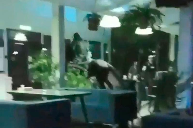Въехавшего на лошади в кафе хулигана установила полиция Текели