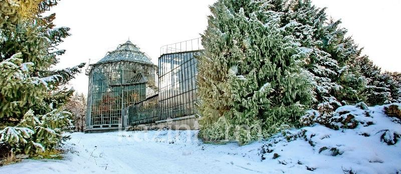 Almatynyń botanıkalyq baǵy ákimdik qaramaǵyna berile me – komıtet jaýaby